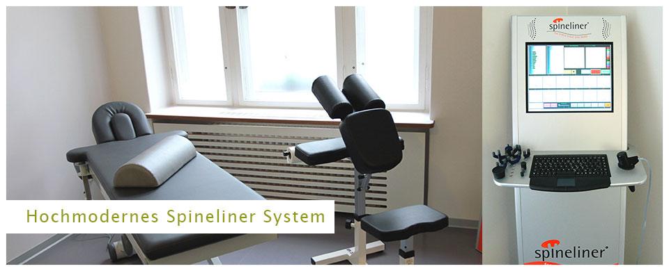 Spineliner System